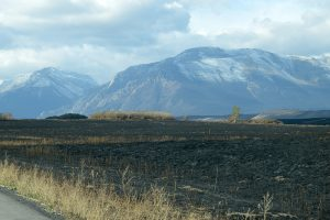 Waterton Park Fire Update