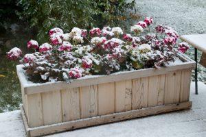 Sept 29 -1st Snow !!!